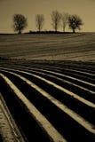 полет земли к Стоковая Фотография RF