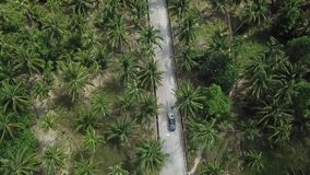 Полет над дорогой в джунглях на острове Koh Phangan сток-видео