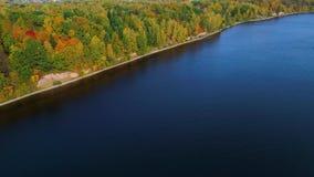 Полет над озером и лесом на осени сток-видео