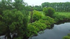 Полет над рекой Seim, Украиной окружил деревьями - воздушный делать видеосъемку видеоматериал