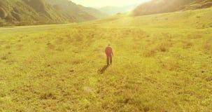 Полет над туристом рюкзака пешим идя через зеленое поле горы Огромная сельская долина на летнем дне акции видеоматериалы