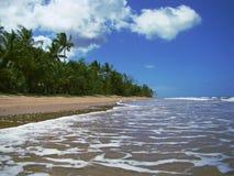 полет пляжа Стоковые Изображения RF