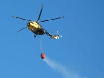 полет пожара птицы Стоковые Фотографии RF