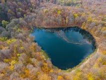 Полет трутня над спрятанным Gosh озером в армянских лесах осени стоковые изображения rf