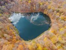 Полет трутня над спрятанным Gosh озером в армянских лесах осени стоковое фото
