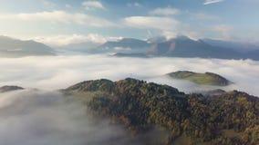 Полет утра над туманным ландшафтом в осени с красивыми золотыми цветами Промежуток времени замедленного движения видеоматериал