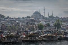 1 полет s птицы Стамбул индюк Стоковая Фотография