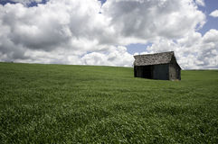 поле амбара Стоковая Фотография RF