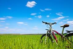 поле велосипеда Стоковое Изображение RF