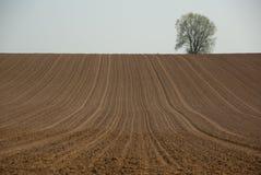 поле вспахало Стоковые Изображения RF