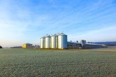 Поле в хлебоуборке с силосохранилищем Стоковая Фотография RF