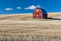Поле голубого неба и пшеницы красного амбара stuble Стоковые Фотографии RF