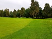 Поле для гольфа во время summe Стоковая Фотография RF
