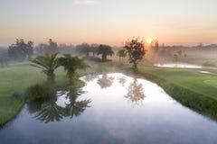 Поле для гольфа зеленого цвета вида с воздуха с заходом солнца и туманом в утре стоковые фото