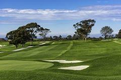 Поле для гольфа на соснах Torrey La Jolla Калифорнии США около Сан-Диего стоковое фото rf