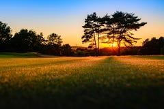 Поле для гольфа пустыни щеголя гоньбы Cannock Стоковое Фото