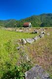 Поле дома и риса Стоковая Фотография RF