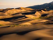 Поле дюны на заходе солнца/восходе солнца Стоковые Изображения RF
