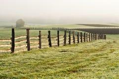 поле загородки осени Стоковые Изображения RF