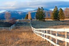 поле загородки Стоковая Фотография RF