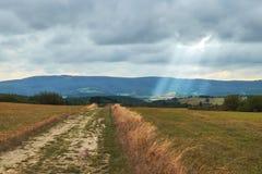 Поле земледелия осени с лучем света от облаков стоковые фотографии rf