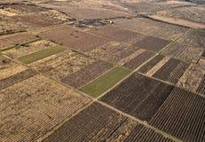 поле земледелия Стоковое Фото