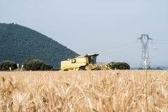 Поле зерна на переднем плане в Провансали с зернокомбайном в ба Стоковая Фотография