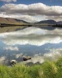 поле Исландия Стоковая Фотография