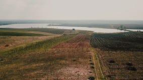Поле и озеро от высоты сток-видео