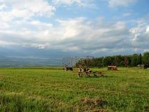 поле Квебек Стоковое Изображение RF