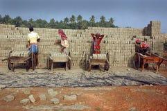 поле кирпича Индия Бенгалии западная Стоковое Изображение RF