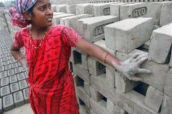 поле кирпича Индия Бенгалии западная Стоковые Изображения RF