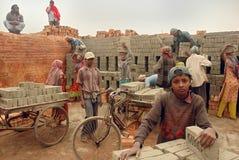 поле кирпича Индия Бенгалии западная Стоковые Фото