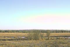 Поле ландшафта зимы покрашенное в цветах лета Стоковые Изображения