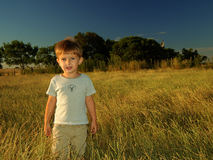 поле мальчика сиротливое стоковое фото