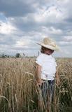 поле мальчика Стоковые Фото