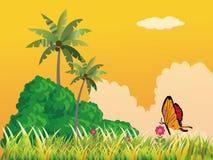 поле маргаритки бабочки Стоковое фото RF