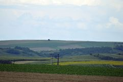 поле Мульти-цвета Стоковая Фотография