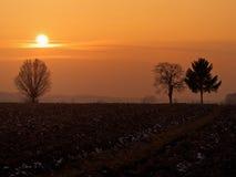 поле над заходом солнца Стоковые Фотографии RF