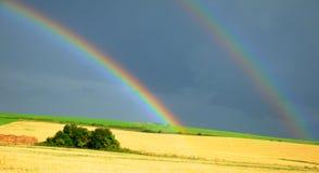 поле над радугой Стоковое Фото