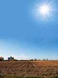 поле над светя солнцем Стоковые Изображения