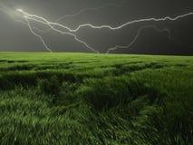 поле над штормом Стоковое Фото