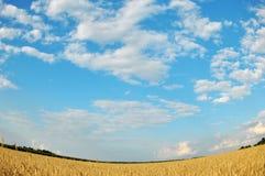 поле облаков сверх Стоковая Фотография