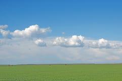 поле облаков Стоковые Фотографии RF