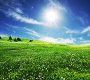 поле облаков Стоковые Фото