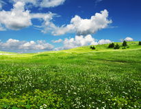 поле облаков стоковые изображения
