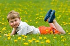 поле одуванчика ребенка Стоковые Изображения