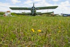 поле одуванчика самолета Стоковая Фотография RF