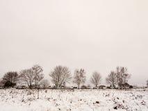 поле покрытое снегом вне линии деревьев и ландшафта sid загородки Стоковое Изображение RF