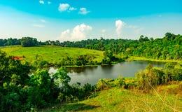 Поле пруда и зеленой травы для животных живой природы и дороги сельской местности на холме около плотных деревьев в тропическом л Стоковая Фотография